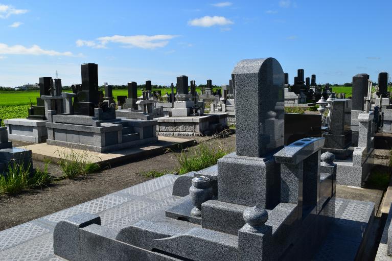 引越し先となる新規墓所の確保